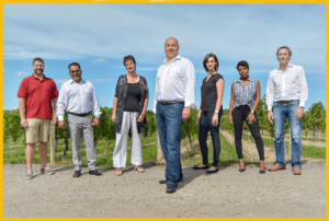 Three Pillars Team members standing in a vineyard